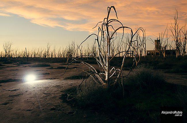 Flash y luz ambiente fotora - Luz y ambiente ...